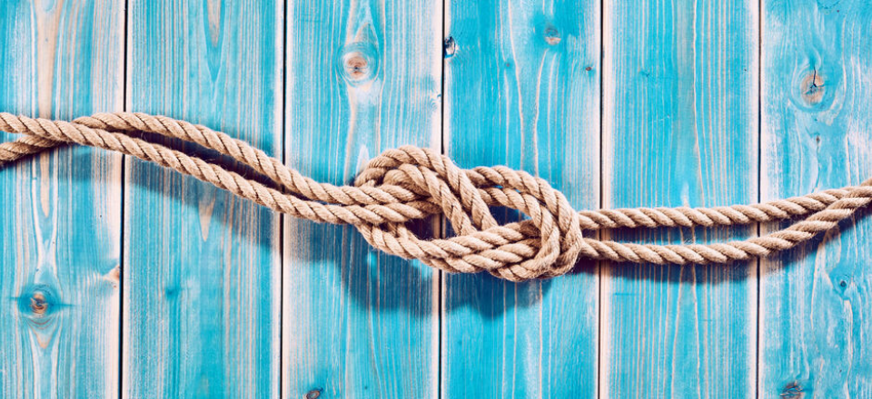 Where to Learn the Ropes for Being an Independent Business Consultant